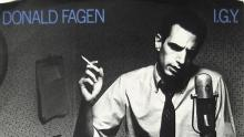 Donald Fagen IGY cover art