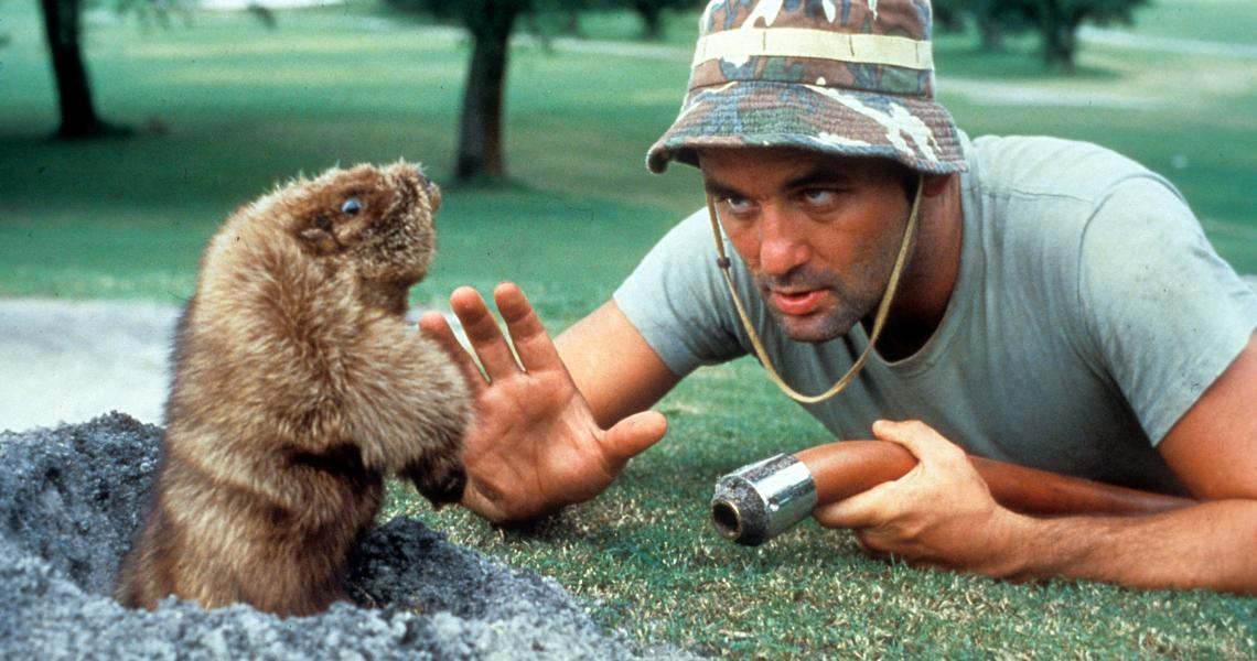 In 'Caddyshack,' Bill Murray had to think like an animal - and, wherever possible, to look like one.